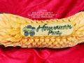 Hawaiian party zucca gig firma.jpg